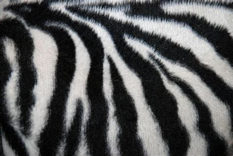 photoshop zebra pattern tutorial human and animal skin leather textures for photoshop psddude