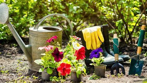 Avoir Un Beau Jardin by Astuces Pour Avoir Un Beau Jardin