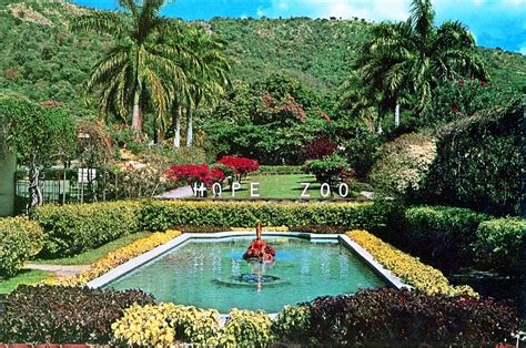 botanical gardens in jamaica