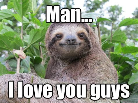 I Love You Man Memes - man i love you guys stoned sloth quickmeme