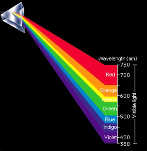 seeing as color human beings can perceive specific wavelengths as colors