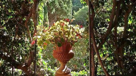 jardines en valencia paseo por los jardines de monforte valencia