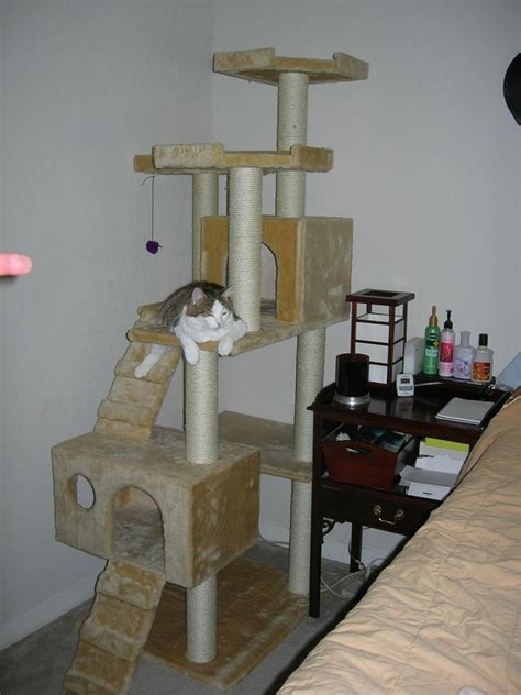 Homegrown And Handmade - file cat tree jpg wikimedia commons