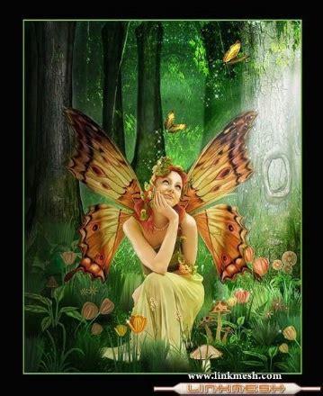 imagenes de hadas y mariposas hada mariposas hadas