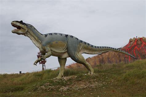 Dino Tirex free images predator fauna tyrannosaurus rex dinosaur