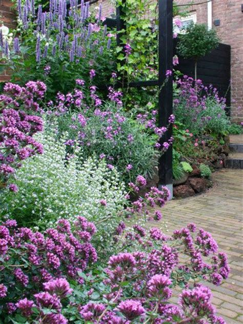 Purple Flower Garden 25 Best Ideas About Purple Garden On Ground Cover Flowers Ground Cover Shade And