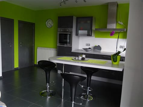 Supérieur Peinture Verte Salle De Bain #9: d%C3%A9coration-cuisine-verte-et-grise.jpg