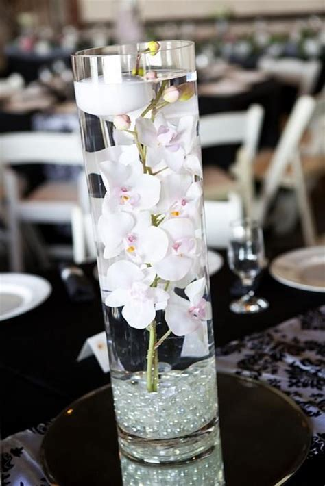 Floating Orchids In Vase by 85 Best Images About Cylinder Vases On White