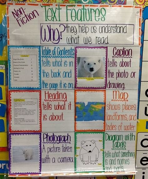 definition biography text text features anchor chart text features for non fiction