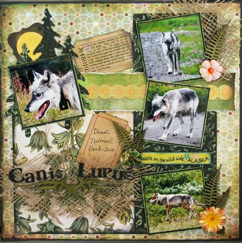 Sle Layout Of Scrapbook | 17 best images about nature scrapbook layouts on pinterest