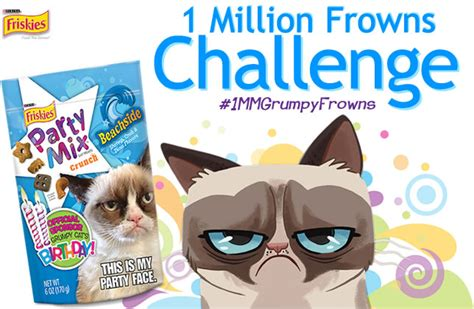 grumpy cat party ideas one charming party birthday kara s party ideas i m helping friskies throw a party for