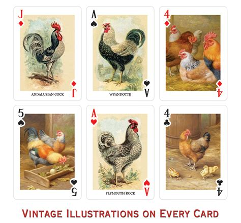 chicken rubber sts chicken cards 100 images chicken rooster cards from