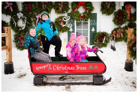 gallery of christmas tree farms in mn fabulous homes