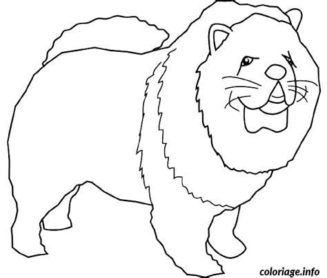 Coloriage Dessin Chien Chow Chowl