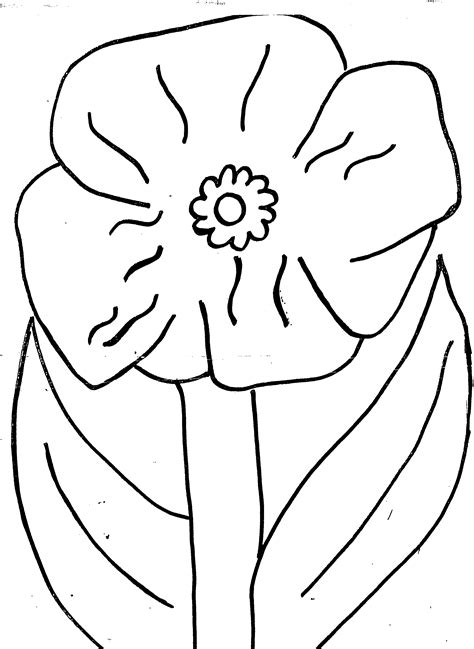Poppy Colouring Page Poppy Colouring Pages