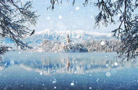 winter landscapes 20 breathtaking photos of winter landscapes bored panda