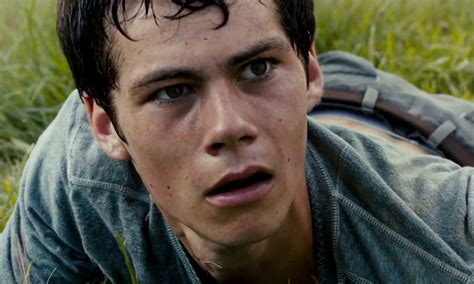 maze runner 2 film release date uk the maze runner the scorch trials release date set for