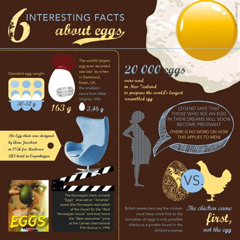 fun easter facts 6 pics 6 interesting facts about eggs infographic infographic