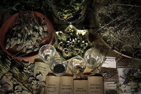 spellbound   singapores  witchcraft store