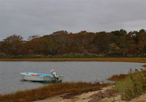 Chappaquiddick Links Wasque Point Picture Of Chappaquiddick Edgartown Tripadvisor