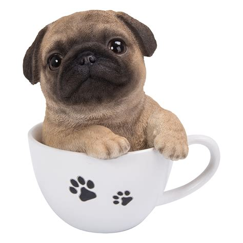 pics of teacup pugs pug puppy in a teacup the home and garden outlet