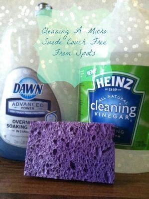 how to clean suede couch with vinegar clean kitchen cabinets mix 1 part vegetable oil 2 parts