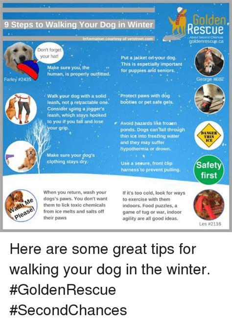 Ca Jaket Wash Ori Nesya 25 best memes about hypothermia hypothermia memes