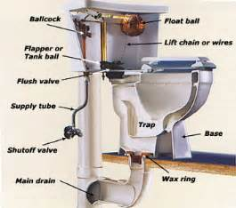 anatomy of a bathtub drain everything you needed to know about the anatomy of a