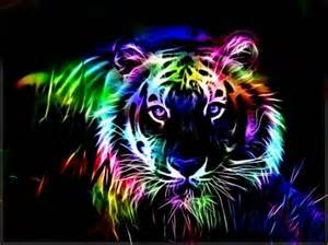 colorful tiger colorful fractal tiger cats wallpaper id 1199520