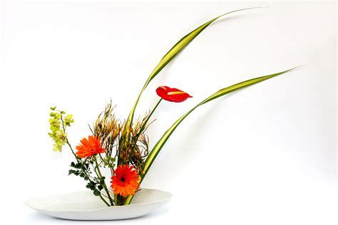 ikebana fiori le magiche composizioni dell ikebana fito
