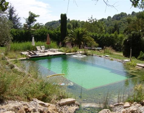 natural pool natural swimming pools on pinterest natural pools
