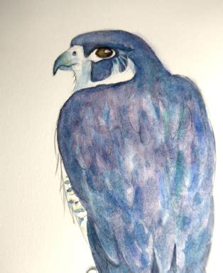 animal artist ~ diane young | every picture tells a story