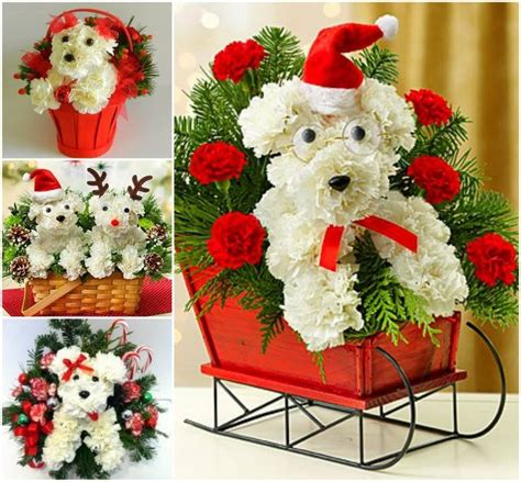 puppy bouquet how to create a puppy bouquet pictures photos and images for