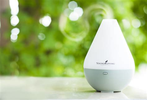 living home diffuser 28 images 1000 ideas about living