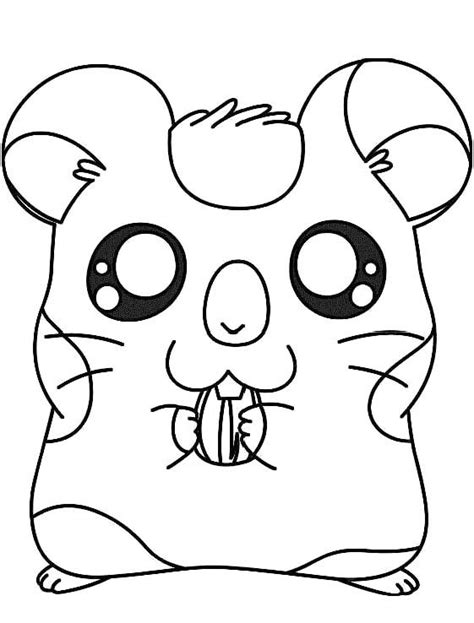 Coloring Page Hamster by Hamster Coloring Pages Coloring Home