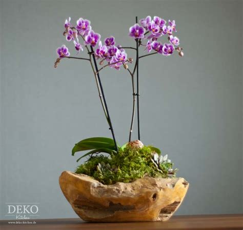 Orchideen Deko Ideen by Diy Orchideen Effektvoll Dekorieren Deko Kitchen