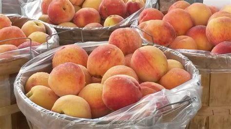 Top Shelf Muskegon Mi by Season Yum Picture Of Muskegon Farmer S Market