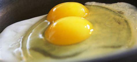 imagenes de cambios temporales y permanentes la f 237 sica de los huevos noticias de tecnolog 237 a