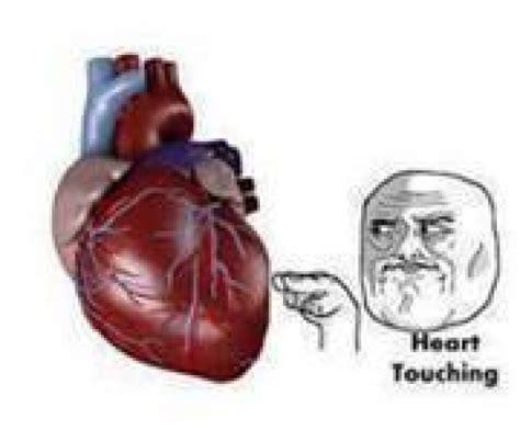 Meme Heart - reaction pic heart touching