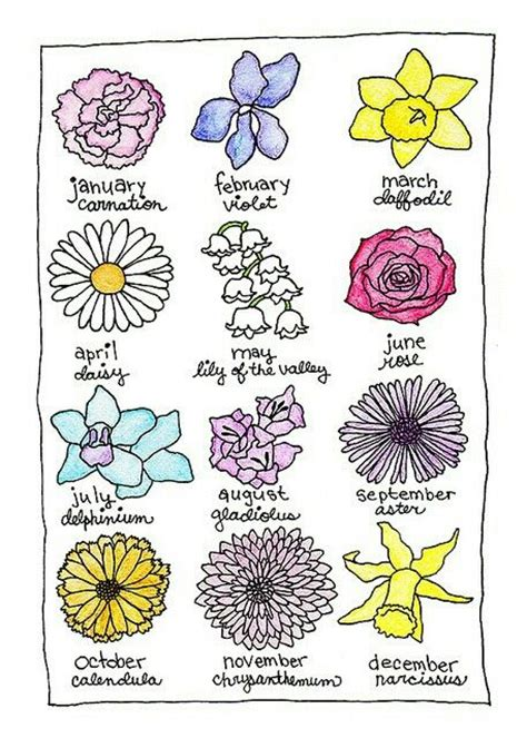 birth month flowers birthday flowers all the little things pinterest