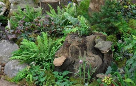 Landscape Timber Disposal Landscape Timber Disposal 28 Images About Us Mulch