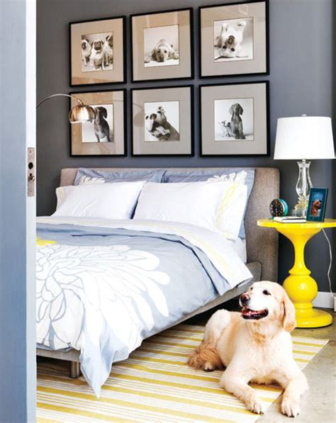 dog home decor 24 ways to dogify your home without sacrificing style