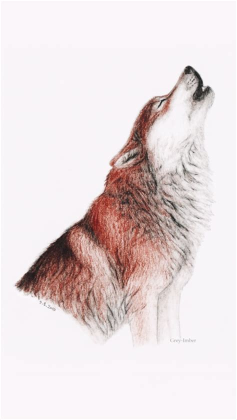 themes tumblr wolf wolf iphone backgrounds tumblr