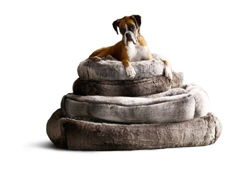 restoration hardware dog bed housewares faux throws