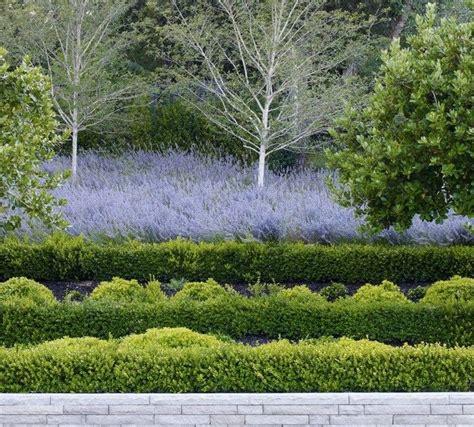 andrea cochran landscape architecture garden inspiration pinterest