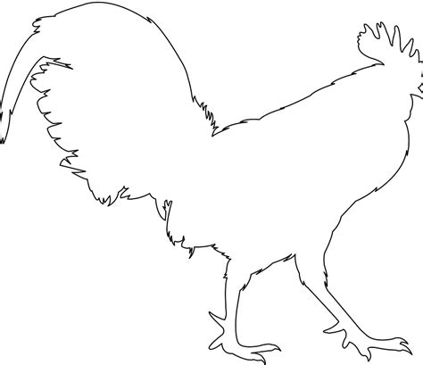 pattern after synonym list of synonyms and antonyms of the word rooster outline