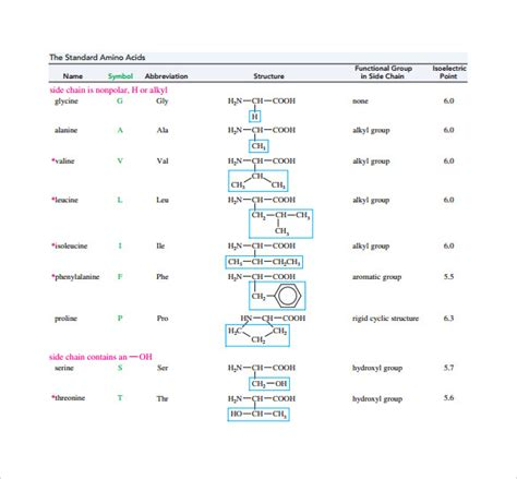 amino acid table sle amino acid chart 16 free documents in word pdf