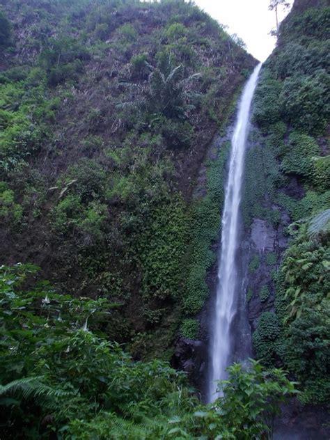 Kopi Nan Sabana jawa timur tak hanya surabaya dan malang wisata di jember