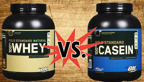 Whey Casein what is casein should i take casein or whey protein