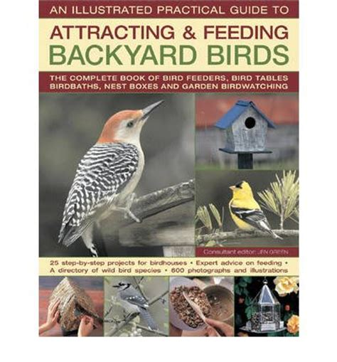 an illustrated practical guide to attracting feeding